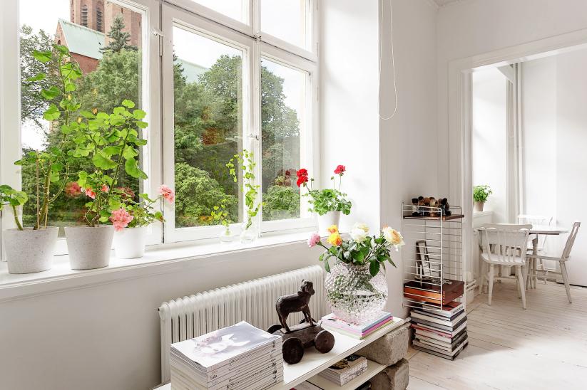 Recordatorio: Poner flores en la casa