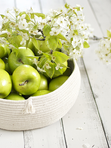 Coiled-Rope-Basket-with-apples
