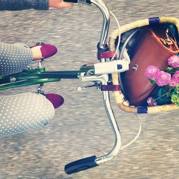 Todo lo que tienes que saber para cuidar tu bicicleta