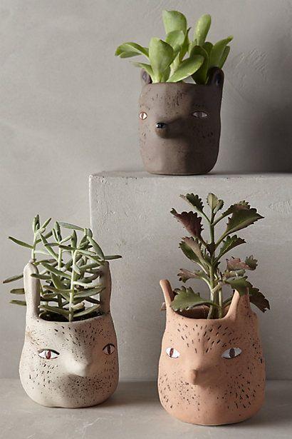 Originales macetas para tus plantas depto51 blog - Macetas originales para plantas ...