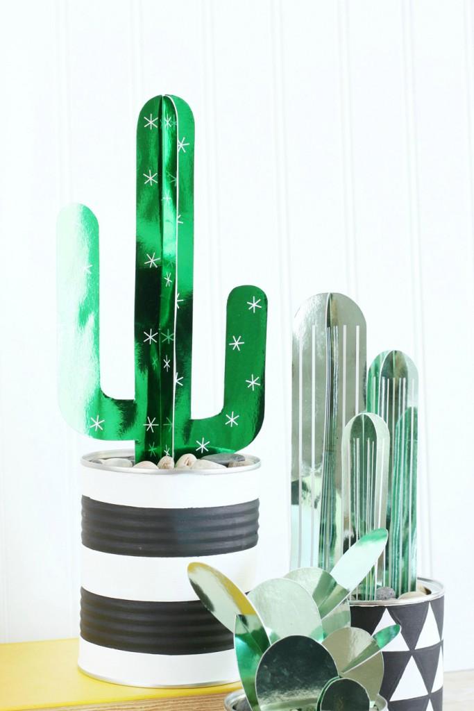 DIY-Cactus-Plants-5