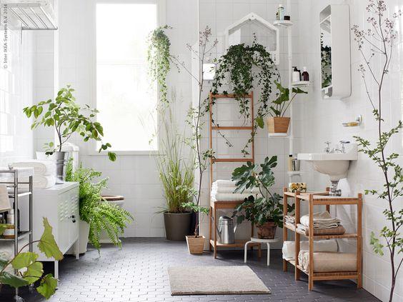 ¿Plantas en la ducha? Conoce la nueva tendencia en decoración de baños