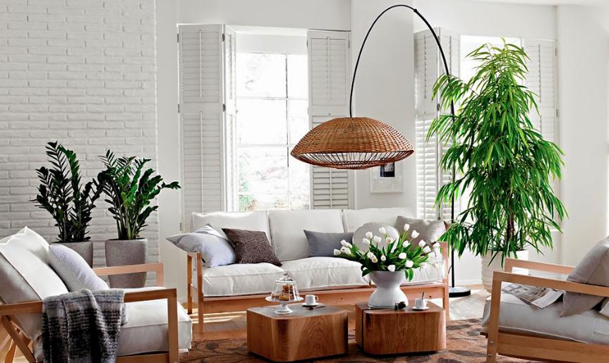 ideas para decoracion Ideas Para Decorar Tu Casa Con Plantas Depto51 Blog